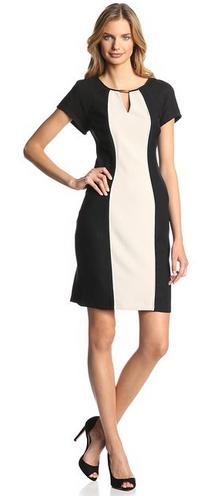 What_kind_of_dress_should_wear_15_sheath